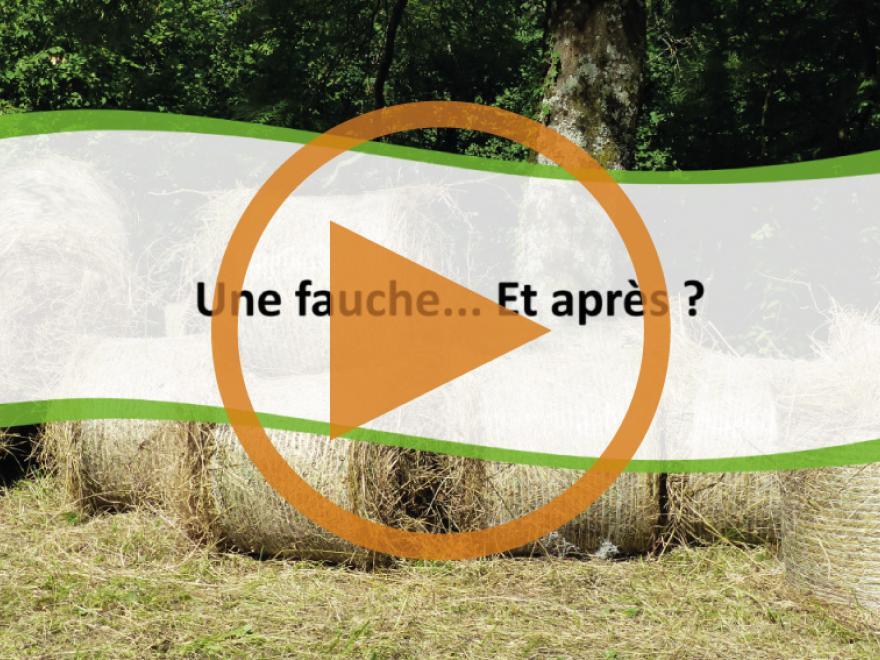 Récupération des produits issus de la fauche des marais faite par le Conservatoire d'espaces naturels Isère