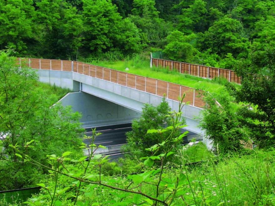 Ecopont permettant le passage de la faune au-dessus de l'autoroute A7,© L. Bergès (Irstea)