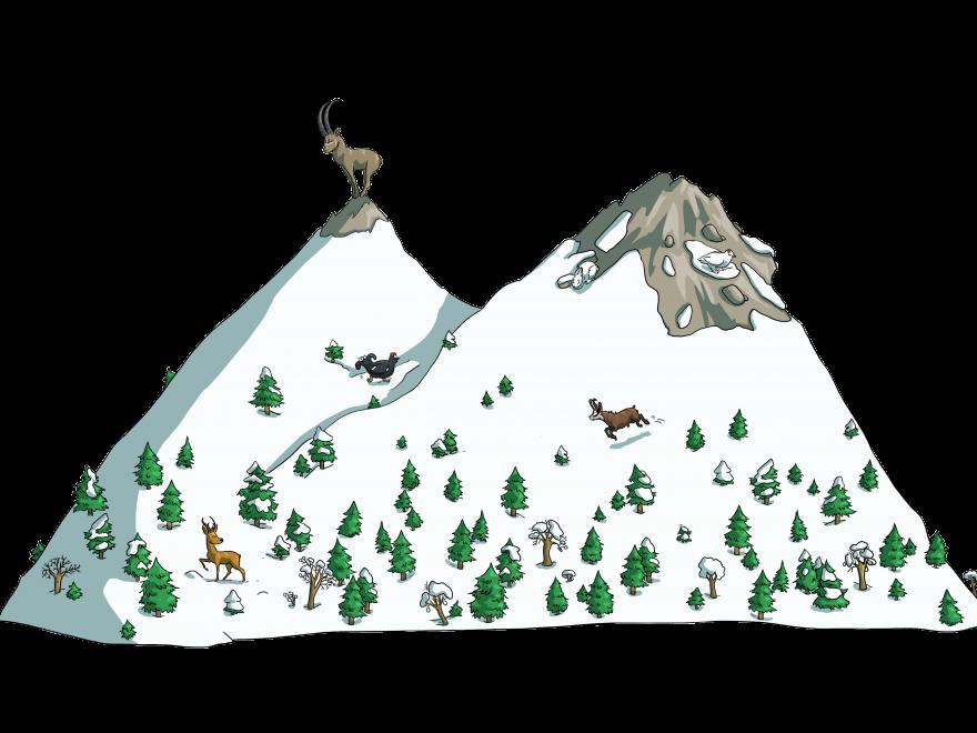 Dessin de la mallette pédagogique « Hiver sauvage, montagne en partage » réalisé par Igor Frey de Sempervirens et Belledonne en Marche dans le cadre de la politique Espace Naturel Sensible.