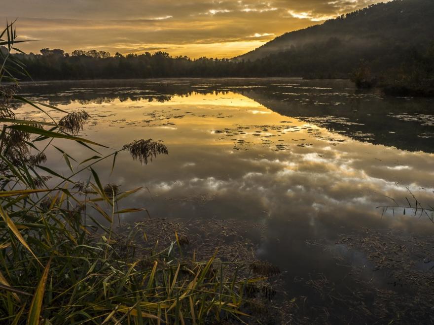 Photo de zone humide de l'Isère, Denis Palanque tous droits réservés, pour nature isère