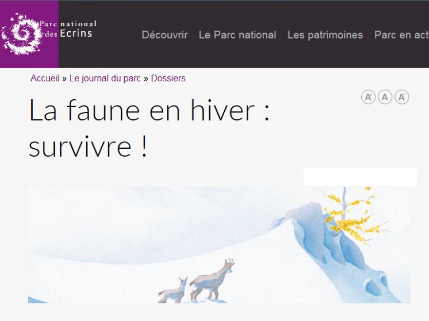 Page d'accueil du dossier La faune en hiver: survivre ! du parc national des ecrins