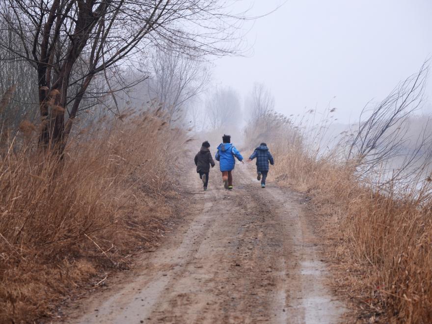 Enfants dans une zone humide, CC0 Domaine public, nature isère