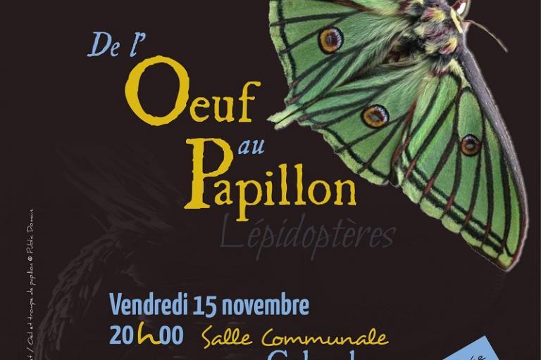 Affiche Conférence Papillon Patrick Rosset