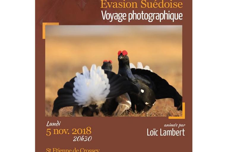Affiche Conférence Loic Lambert