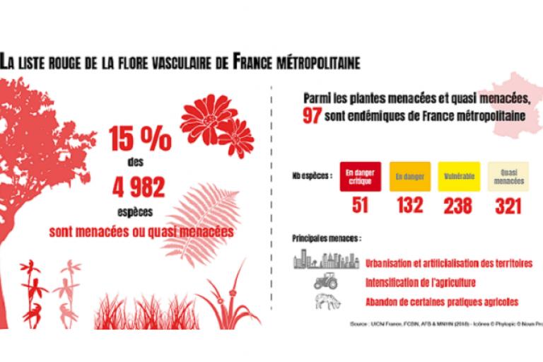 Visuel pour représenter la liste des espèces de la flore vasculaire de France métropolitaine menacées sur Nature isère