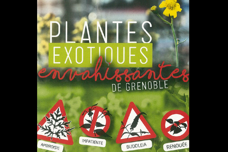 Capture écran de la plaquette plantes exotiques envahissantes de Grenoble, nature isère