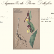 Aquarelles de Pierre Deléglise sur le portail documentaire du Muséum de Grenoble