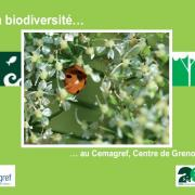 Première page de la plaquette du CEMAGREF sur la biodiversité, nature isère