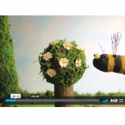 Film d'animation de Télabotanica, nature isère