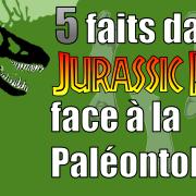 5 faits dans Jurassic Park face à la Paléontologie