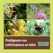 Capture, pollinisateurs, nature isere