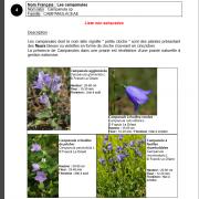 Une fiche de la liste des plantes indicatrices de la richesse floristique d'une prairie, nature isère