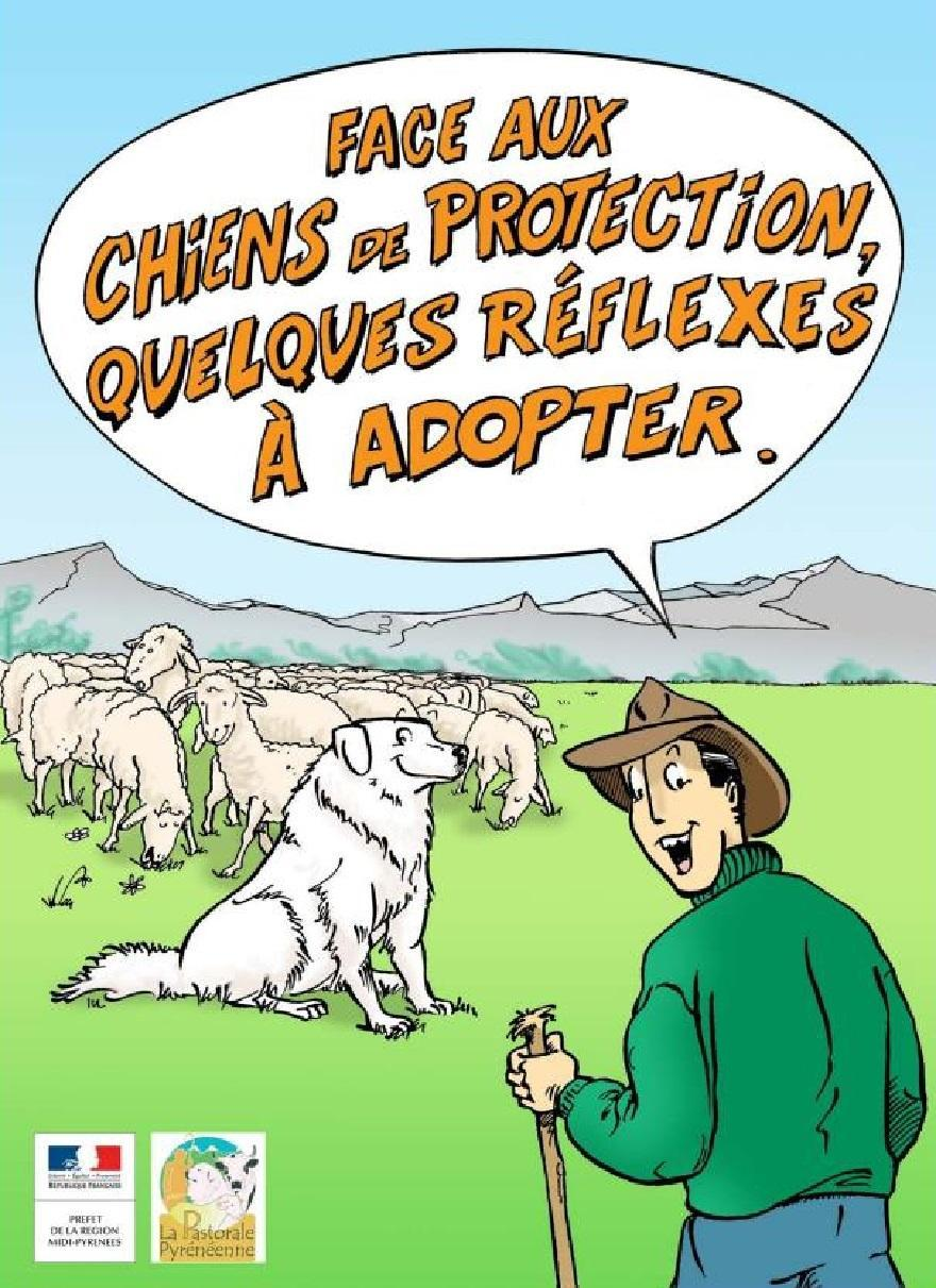 Bande dessinée DREAL Midi Pyrenees la_pastorale pyrénéenne, nature isère
