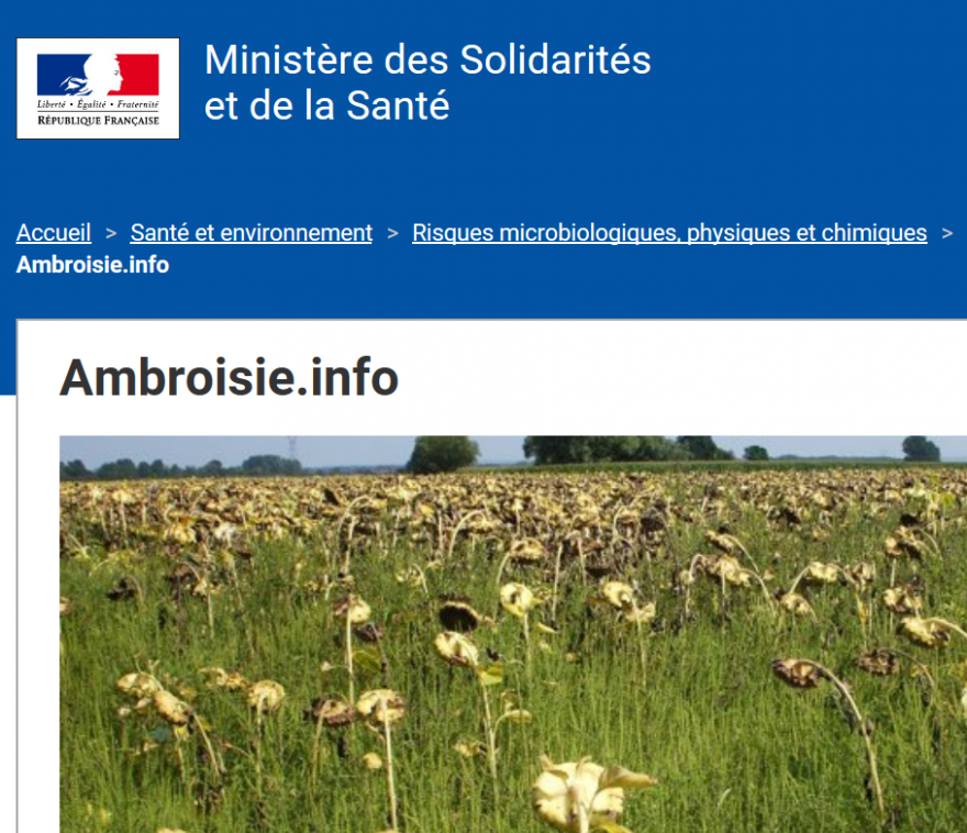 Ambroisie.info, nature isère
