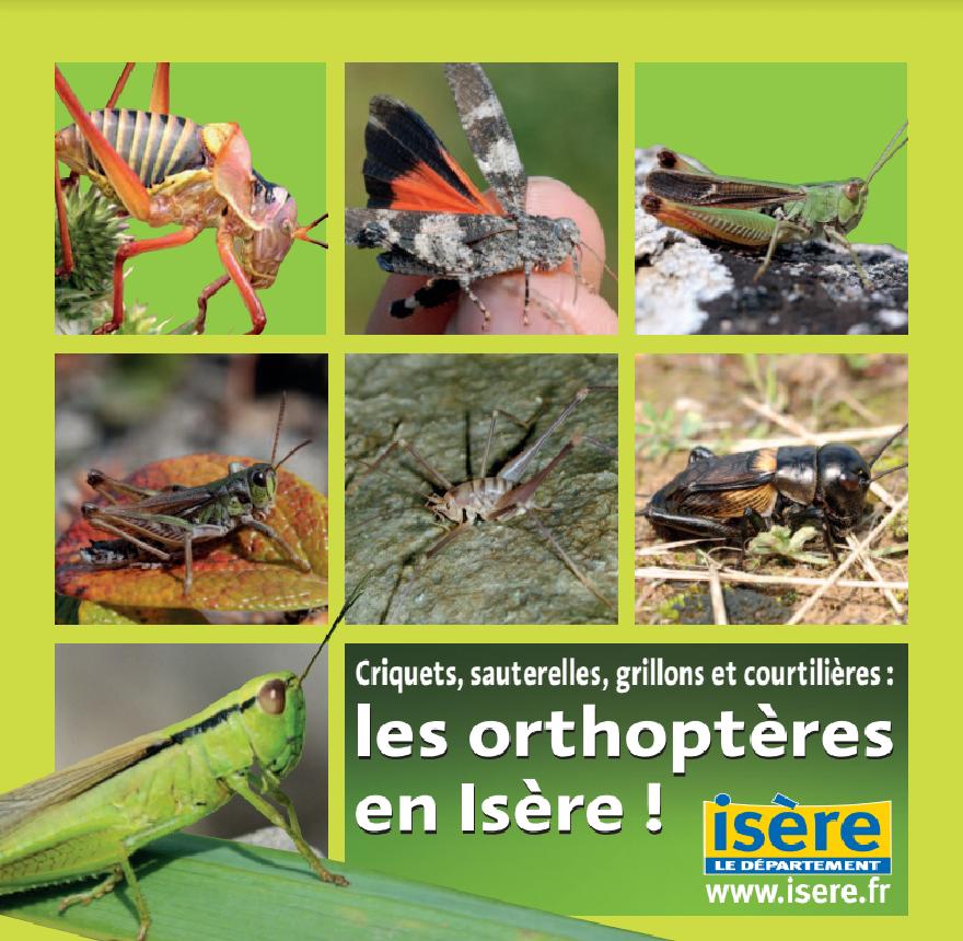 Couverture de la plaquette des orthoptères de l'Isère, nature isère