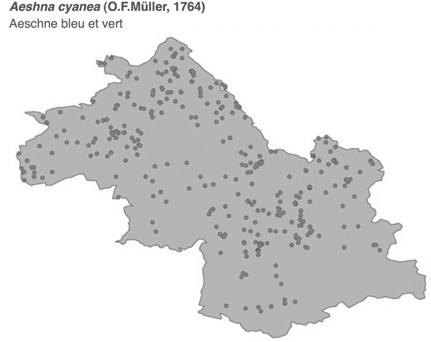 Carte de répartition de l'Aeschne bleue en Isère