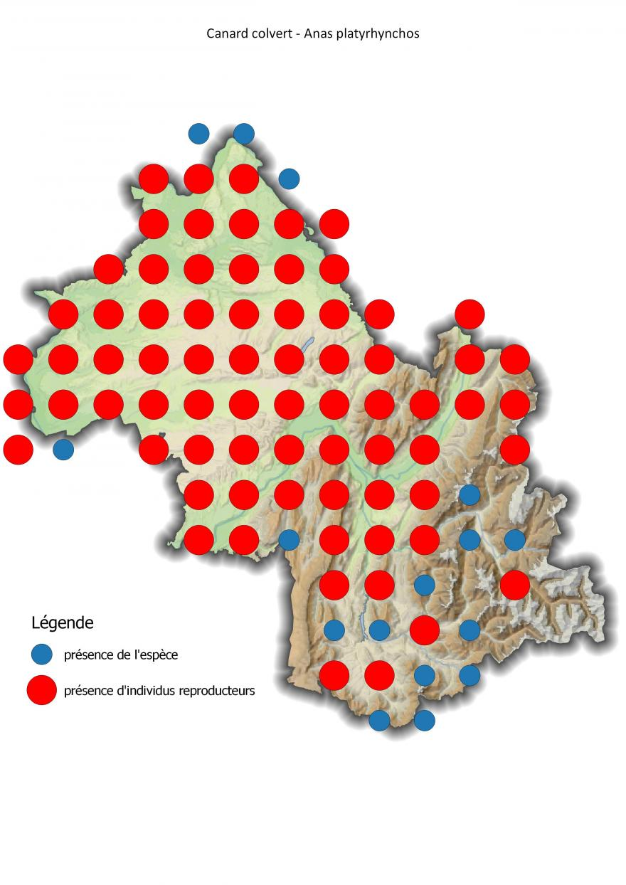 Carte de répartition du canard colvert en Isère (2001-2016).