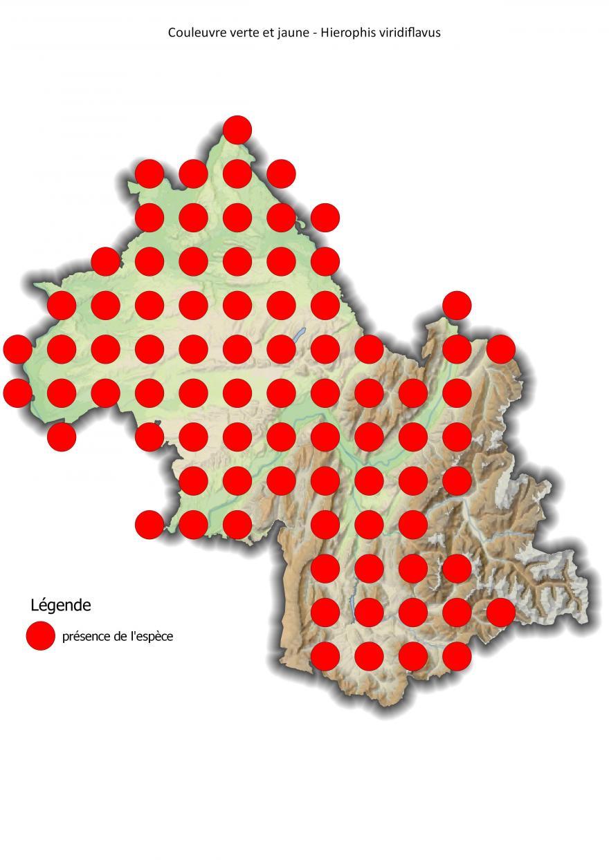 Carte de répartition de la couleuvre verte et jaune en Isère (2001-2016).