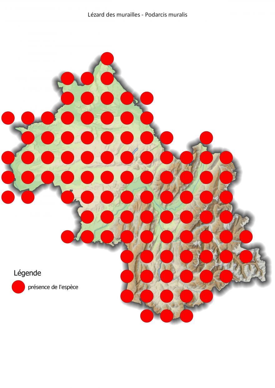 Carte de répartition du lézard des murailles en Isère (2001-2016).