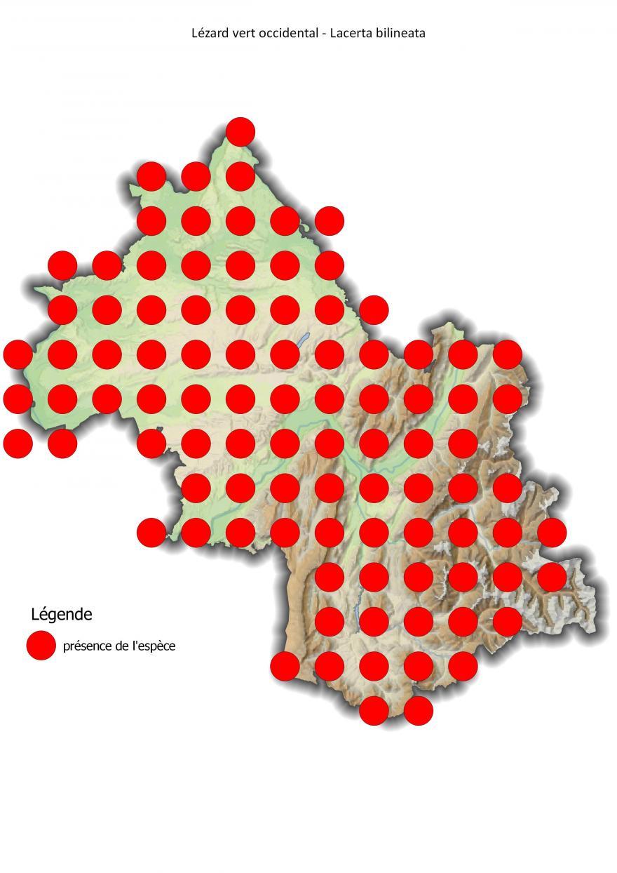 Carte de répartition du lézard vert occidental en Isère (2001-2016).