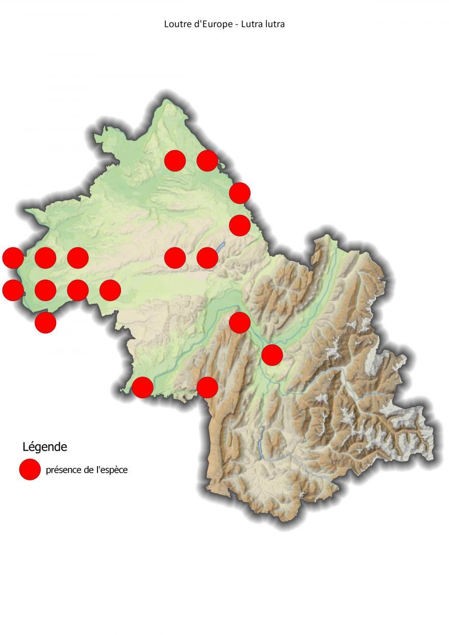 Carte de répartition de la loutre d'Europe en Isère (2001-2016).