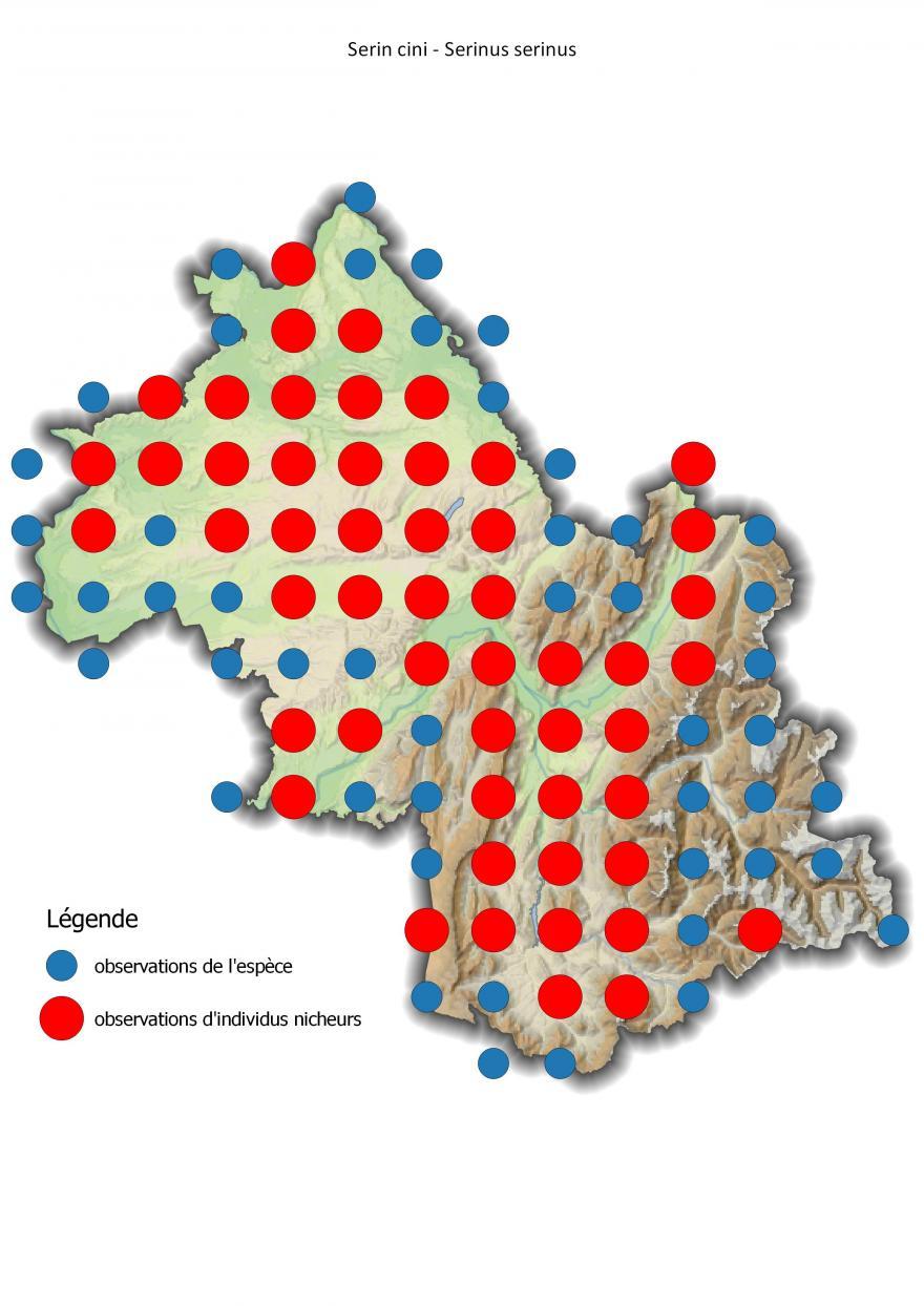 Carte de répartition du serin cini en Isère (2001-2016).