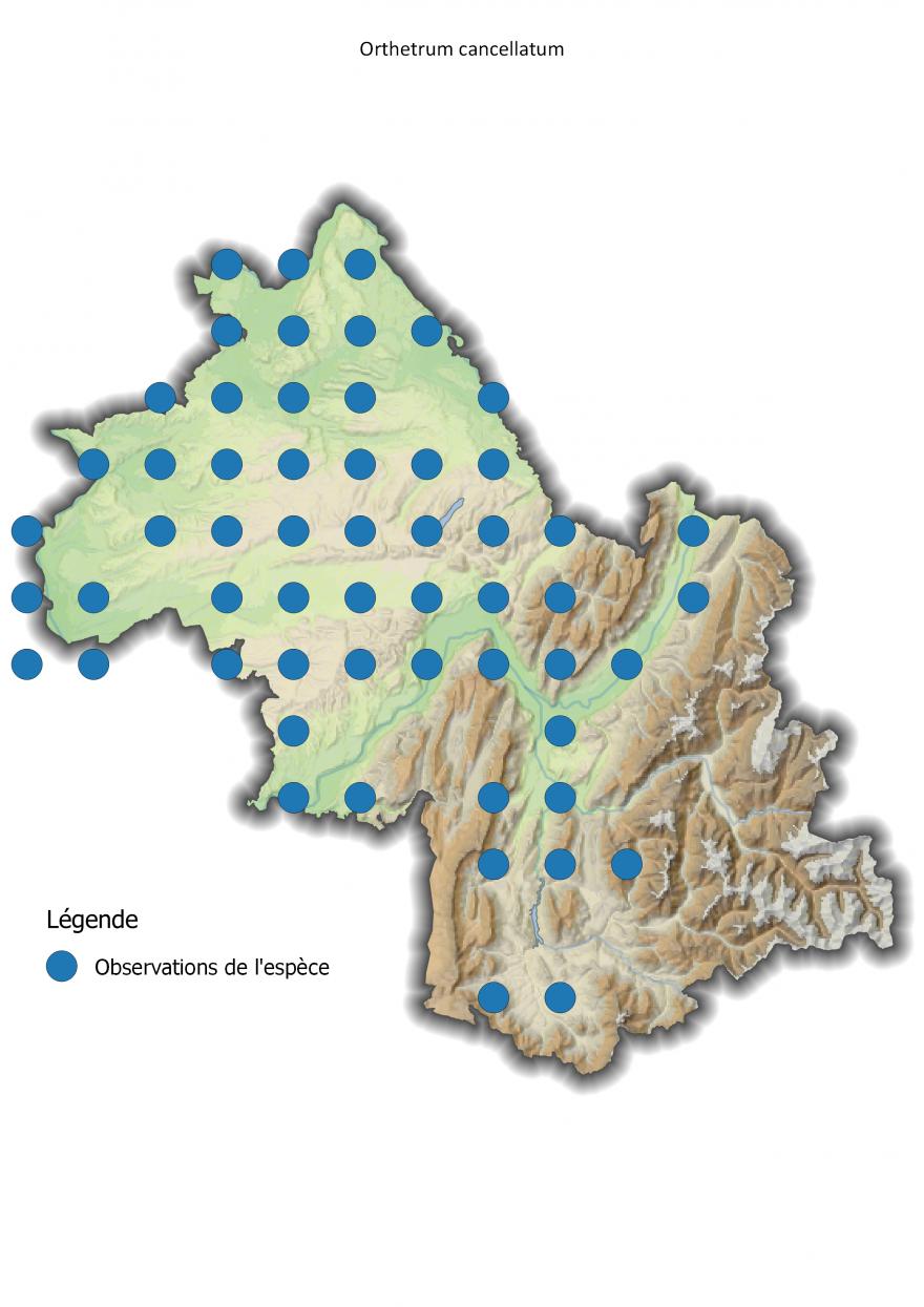 Carte de répartition de l'Orthétrum réticulé en Isère - Nature Isère