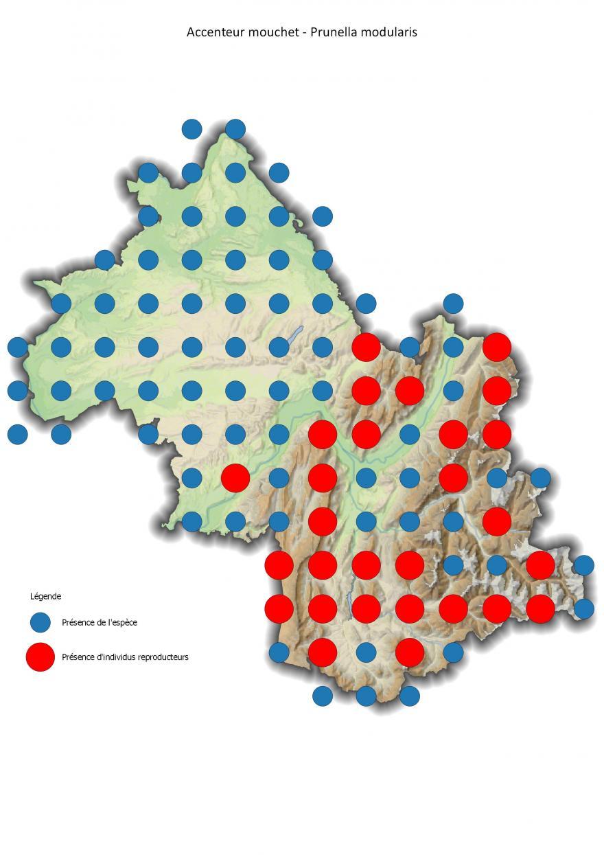 Répartition de l'accenteur mouchet en Isère (2001-2016).