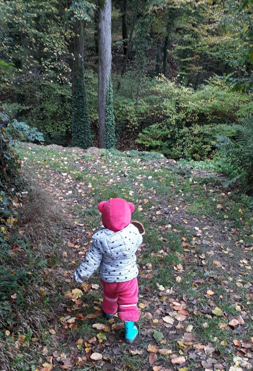 Se promener en forêt : quel bonheur !
