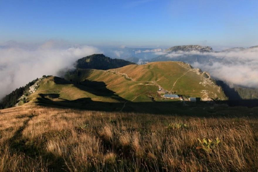 Charmand som, Augier, Chartreuse-tourisme-Diverticimes