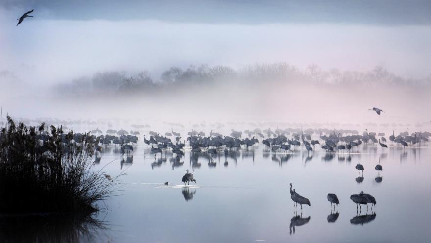 D'autres terres plus douces ©Maxence Lamoureux