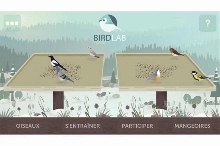 Page d'accueil de BirdLab