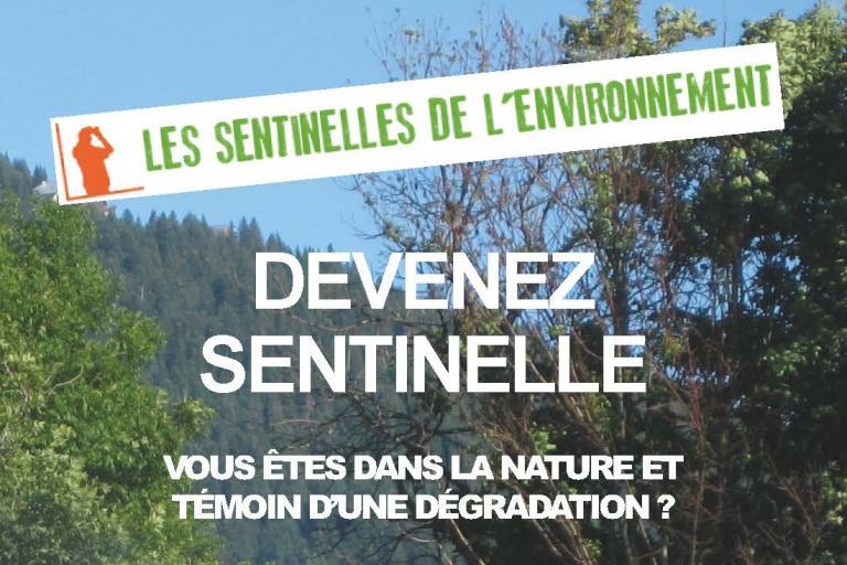 Devenez sentinelle de l'environnement !