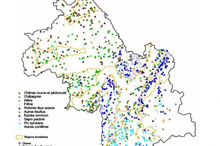 Carte des espèces forestières en Isère, nature isère