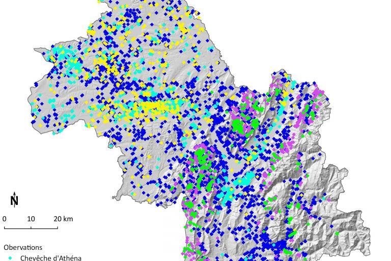 Carte chouettes en Isère depuis 2009 par Faune isère de la LPO Isère