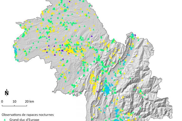 Carte hiboux en Isère depuis 2009 par Faune isère de la LPO Isère