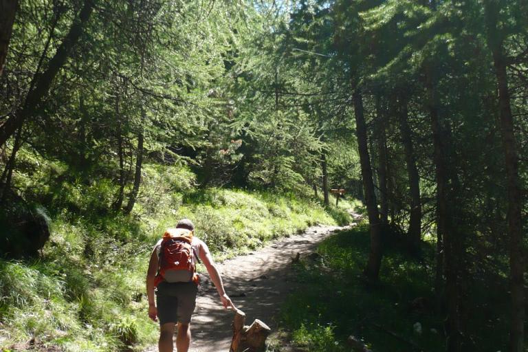 Randonneur en forêt, nature isère