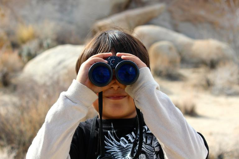 L'observation de la nature