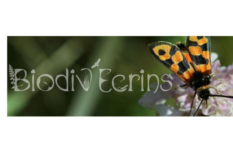 Biodov'Ecrins - bandosite, nature isère