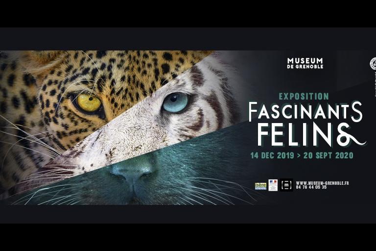 Affiche expo fascinants félins, Muséum de la ville de Grenoble