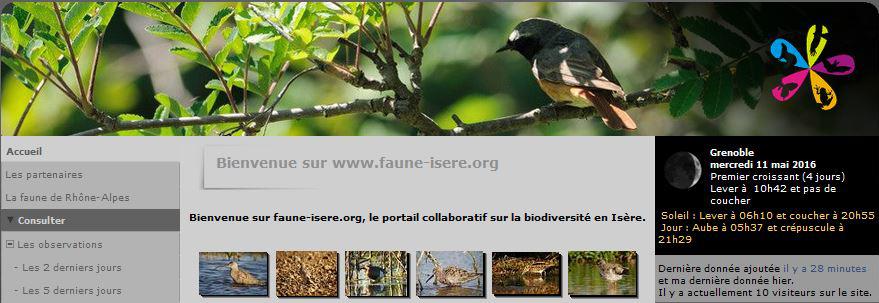 Pour partager ses observations sur Faune isère | Nature Isère